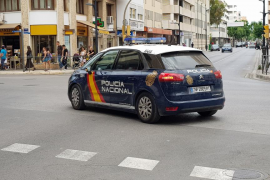 Desarticulado un grupo organizado especializado en robos con fuerza en negocios de Ibiza