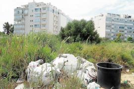 Limpieza, transporte público y aparcamiento, puntos débiles de Vila