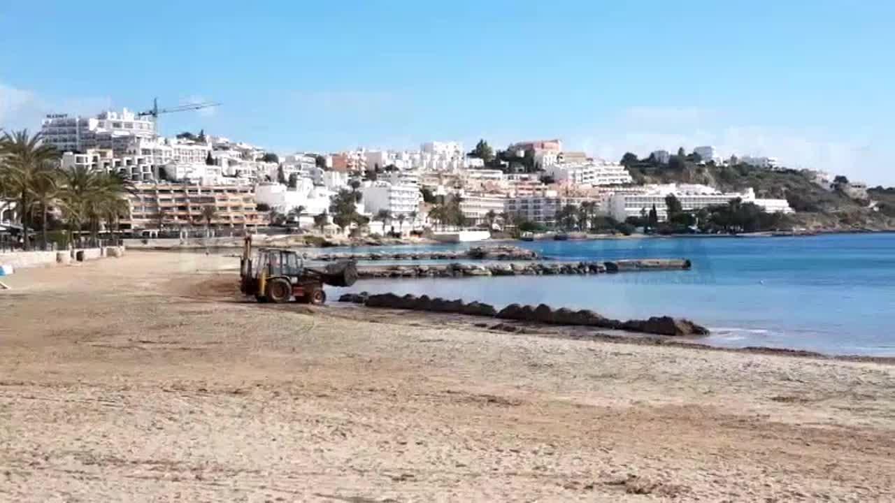 Barreras de posidonia para salvar la arena de las playas
