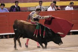 El Tribunal Constitucional suspende cautelarmente los 'toros a la balear'