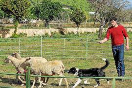 Lección de pastoreo con el número 1 de España