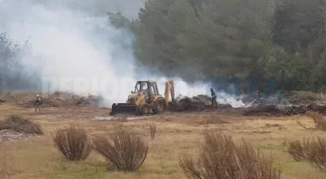 Incendio en Cala Llonga por una quema descontrolada e irregular de rastrojos