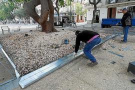 Vila protege las piedras del ficus de Vara de Rey