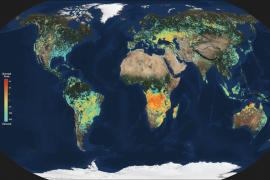 Resuelto el enigma del origen de las crecientes emisiones de metano