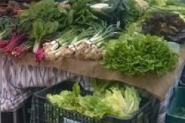 Mercado semanal de Las Palmeras