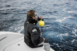 El artilugio que escucha a los delfines