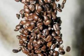 Medi Ambient prohibirá las cápsulas de café de un solo uso y no reciclables
