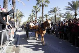 Centenares de personas celebran el día grande de Sant Antoni