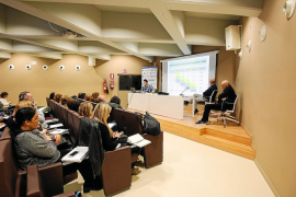 Ibiza mejora los resultados educativos, pero no la tasa de abandono escolar