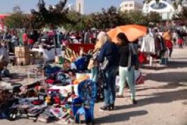 Mercado semanal de Son Fuster