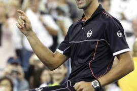 Djokovic sigue imparable y Verdasco sucumbe ante Tsonga