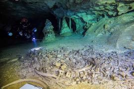 La mayor cueva inundada del mundo tiene huesos de 2,6 millones de años