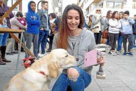 Santa Eulària acoge una nueva jornada de adopción responsable