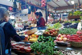 Calidad y variedad de tubérculos y verduras