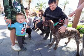Jornada de adopción responsable en Santa Eulària (Fotos: Marcelo Sastre).