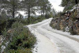 El invierno ha sido más frío en las Pitiusas que en el resto del archipiélago