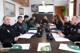 Las infracciones penales en Santa Eulària descendieron un 3,1% en 2017