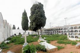 Limpieza a medias en las tumbas del Cementeri Vell de Vila