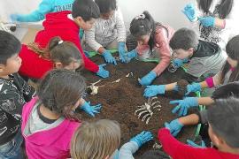 Sa Graduada se colma de pequeños arqueólogos