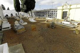 El Cementeri Vell ya no luce un espeso manto de vegetación y malas hierbas