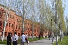 Una profesora afirma que no evaluó a Cifuentes y que su firma fue falsificada