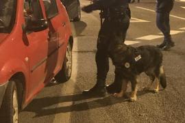Policía Local y Guardia Civil realizan su primer operativo conjunto del año en Sant Antoni