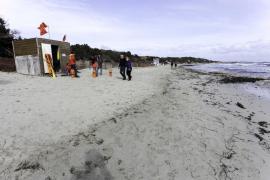 Cerrada la playa de ses Salines por la aparición de medusas 'carabela portuguesa'