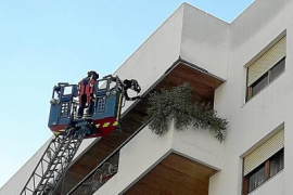 Los Bomberos intervienen en una caída de cascotes de un balcón de Avenida España