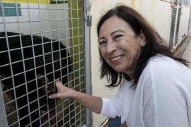 Los animalistas piden la dimisión de Montse García por su gestión al frente de Sa Coma