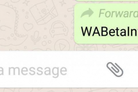 WhatsApp te avisará si un mensaje tuyo haya sido reenviado a otra persona