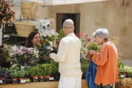 El Feim Barri Feim Flors, en imágenes (Fotos: Arguiñe Escandón).