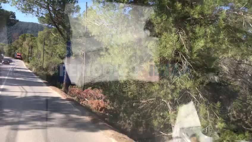 Una furgoneta se empotra contra un árbol tras salirse de la carretera de Cala Tarida