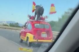Un coche «muy español y mucho español» sorprende en las carreteras