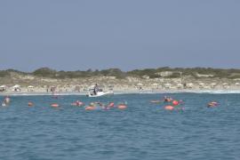 240 nadadores participan en la Vuelta a Formentera