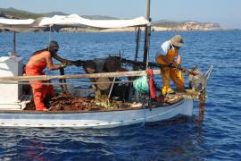 El Consell inicia un proyecto de recuperación de redes abandonadas en el fondo marino