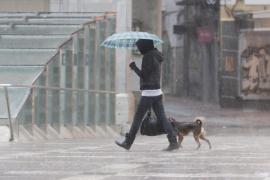 palma temporal de lluvia en palma foto miquel a.