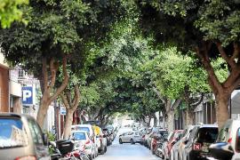 El PP reclama una solución a los problemas de accesibilidad de las calles de Vila «en caso de emergencia»