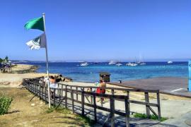 Reabierta al baño la playa de Caló des Moro