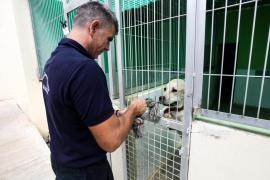 Los ejercicios de la futura unidad canina de búsqueda y rescate, en imágenes (Fotos: Daniel Espinosa).