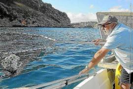 Más de 15 toneladas de residuos recogidos en el litoral balear solo en julio