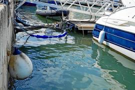 Vecinos y comerciantes piden que se limpien los fangos del fondo del puerto de Ibiza tras el vertido