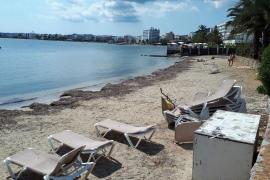 Quejas vecinales por el mal aspecto que presenta la playa de Puig des Molins
