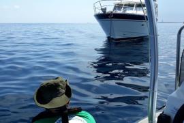 Medi Ambient ha detectado este verano en las Pitiusas 1.035 barcas fondeadas en posidonia