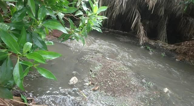 Los vertidos fecales vuelven a inundar los campos de ses Salines