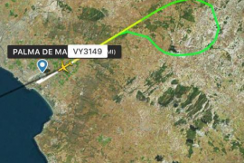 Un avión regresa a Son Sant Joan tras chocar con un pájaro en el despegue