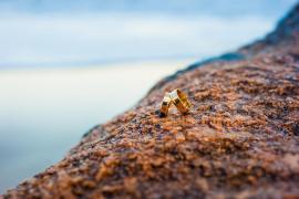 Halla en una playa el anillo de boda perdido hace 14 años
