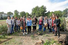 Los agentes sociales de las Pitiusas se reúnen para tratar el 'sinhogarismo'