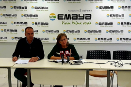 Detectados dos nuevos títulos falsificados de catalán en Emaya
