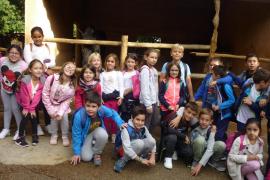Alumnes del Ceip Port de Pollença varen visitar Natura Parc