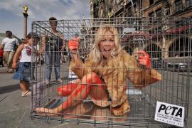 La presentadora de tv alemana Tina Kaiser se encierra en una jaula en protesta por los derechos de los animales en la plaza Mari